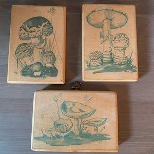Vintage Mushroom Wooden Wall Hangings - Set of 3